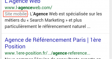 SEO: Nouveau label site mobile officialisé en France
