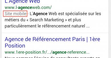 SEO: Nouveau label site mobile officialisé en France