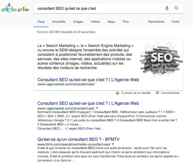 premiere-position-google-consultant-seo-0-paris